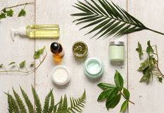 Green cosmetics composition. Composition of containers with cosmetics and green leaves stock photo