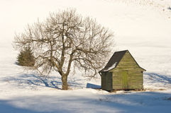 Green cottage on during the winter Stock Image