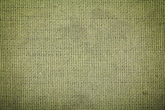 Green cotton fabric texture Stock Images