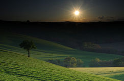 Green country fantasy. Sunrise over the country fantasy scenery background Royalty Free Stock Image