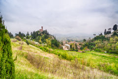 The green countryside around the clock tower Stock Photography