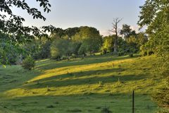 Green countryside Stock Image