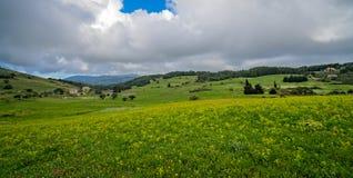 Green countryside of the interior of Zante. Panoramic view of the green countryside of the interior of Zante or Zakynthos Island, Greece stock photography
