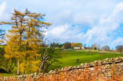 Green Countryside landscape Stock Photography