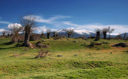 Green countryside - Spain. Mountain scenery in Spanish countryside royalty free stock image