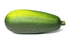 Green courgette Royalty Free Stock Photo