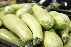 Green courgettes in a grocery. Green courgettes in a big grocery Royalty Free Stock Image
