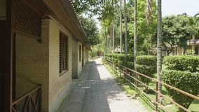 Green courtyard of the hotel in asia. Village in Chitwan national park, Nepal. Green courtyard of the hotel in asia. Village in Chitwan national park, Nepal stock video footage