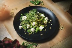 Green couscous and goat cheese salad royalty free stock image