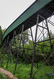 Green covered bridge. In the forest Royalty Free Stock Photos