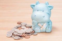 Green cow doll saving box with coins Stock Photos