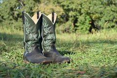 Green cowboy boots in the grass. With a blurry green background royalty free stock photography