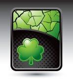 Green cracked background with shamrock Royalty Free Stock Photo