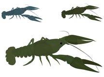 Green crayfish Royalty Free Stock Photo