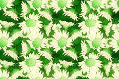 Green and cream floral pattern Royalty Free Stock Photography