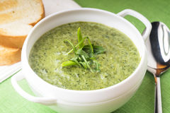 Green cream soup Royalty Free Stock Photography