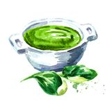 Green cream soup from spinach. Watercolor hand drawn illustration, isolated on white background. royalty free illustration