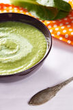 Green cream soup Royalty Free Stock Images
