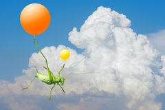 Green cricket and  airballoon Royalty Free Stock Image