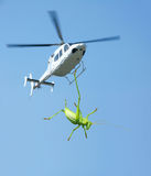 Green cricket and  helicopter Stock Image