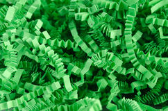 Green shredded crinkled paper for easter basket close up background Stock Photography