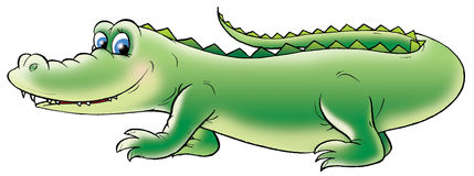 Green crocodile vector illustration
