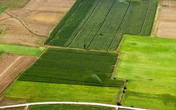 Green crop fields. Aerial view of lush green crop fields being irrigated in countryside royalty free stock photography