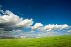 Green crops and cloudy sky royalty free stock images