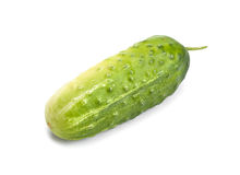 Green cucumber Royalty Free Stock Images