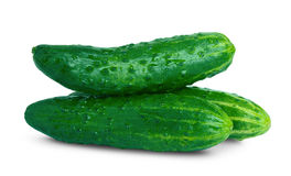 Green cucumber. Fresh cucumbers on white background Royalty Free Stock Images