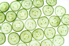 Green cucumber Stock Image