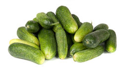 Green cucumber. On white background Stock Image