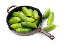 Green cucumber. On the white background royalty free stock images