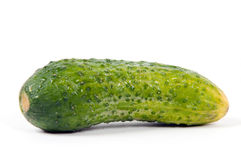 Green cucumber isolated Royalty Free Stock Photography