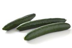 Green cucumber vegetable fruits Stock Photos