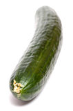 Green cucumber in vertical format Stock Image