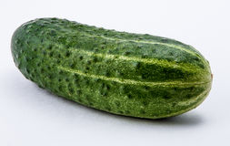 Green cucumber  on a white background Royalty Free Stock Image