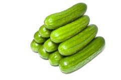 Green cucumbers Royalty Free Stock Photos