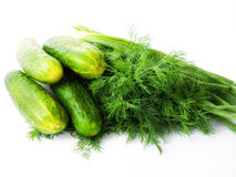 Green cucumbers with dill and spring onions. Royalty Free Stock Photo