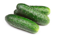 Green cucumbers isolated Royalty Free Stock Photos