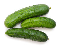 Green cucumbers isolated on white background Royalty Free Stock Photography