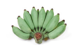 Green cultivated banana, Raw cultivated banana . royalty free stock photography