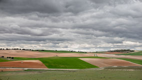 Green cultivated fields against cloudy stormy sky Stock Images