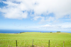 Green cultivated land meets the sea. Royalty Free Stock Photo