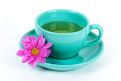 Green cup and flower. Light-green cup with flower on its plate Royalty Free Stock Images