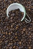 Green cup among a lot of coffee beans. Green and white cup among a lot of coffee beans stock photo