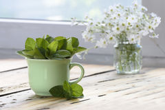 Green cup of melissa officinalis on a wooden table. Fresh green leaves of melissa and peppermint in green cup on wooden background in front of the window royalty free stock photos