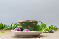 Green cup with saucer. Fresh mint leaves and clover flowers for Royalty Free Stock Image
