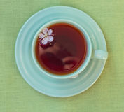 Green cup of tea. View from above Royalty Free Stock Photo