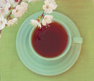 Green cup of tea. View from above Stock Images